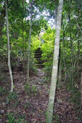 steps to the creek, Clews Property